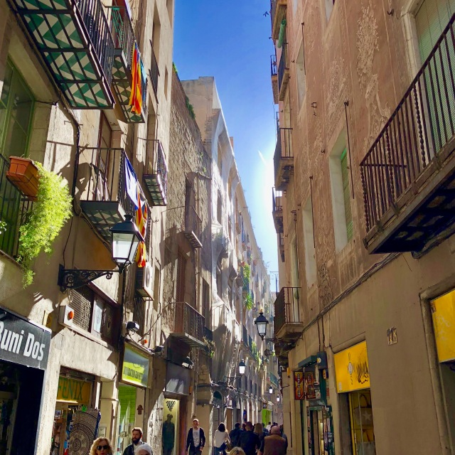 Barcelona Private Tours Old Town 05